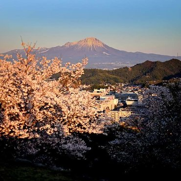 The Best Cherry Blossom Spots In Tottori, Japan