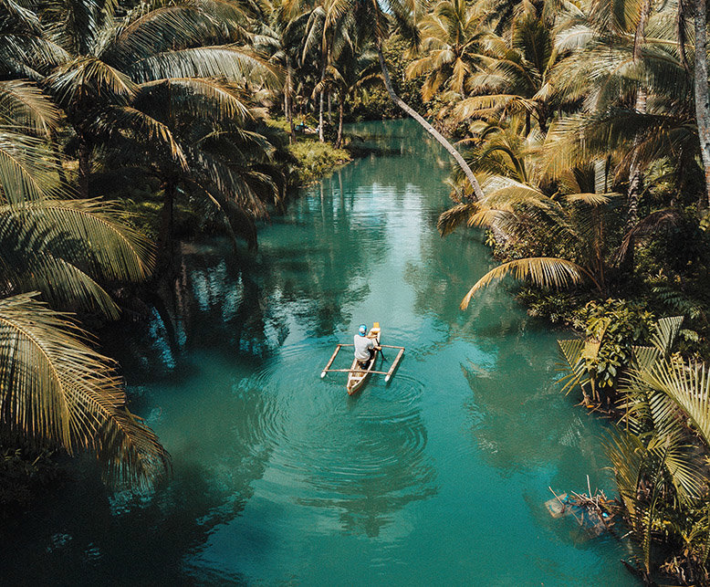 A man boating through a coconut tree-lined lake