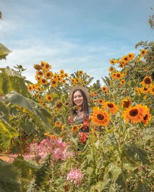 Surround yourself with people who allow you to blossom. Remember that you are your own kind of beautiful. 🌻🌷💐 #clozette #bloggersinteractiveph #PatrishTravels  #sirao #cebu